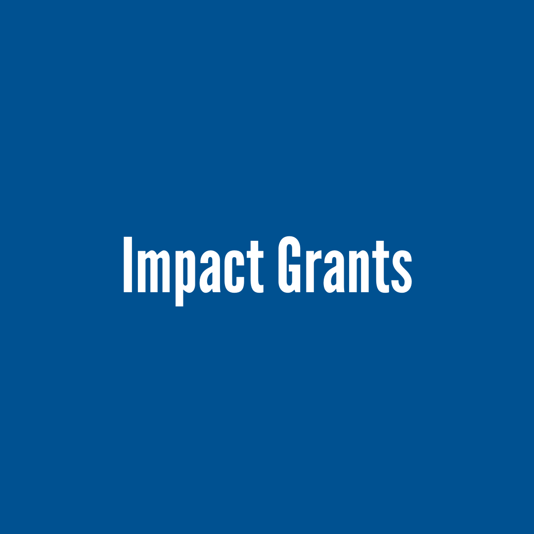 What We Do Impact Grants