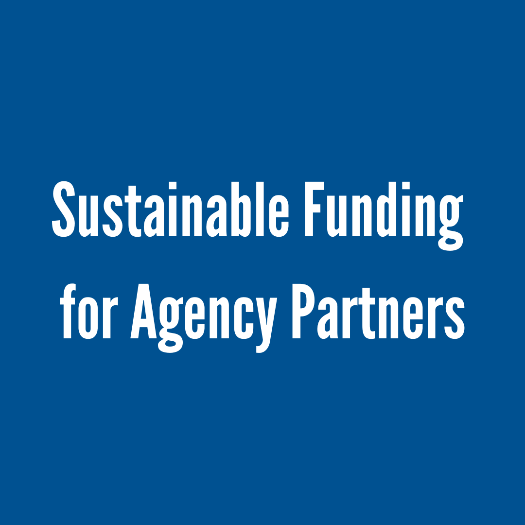 What We Do Sustainable funding